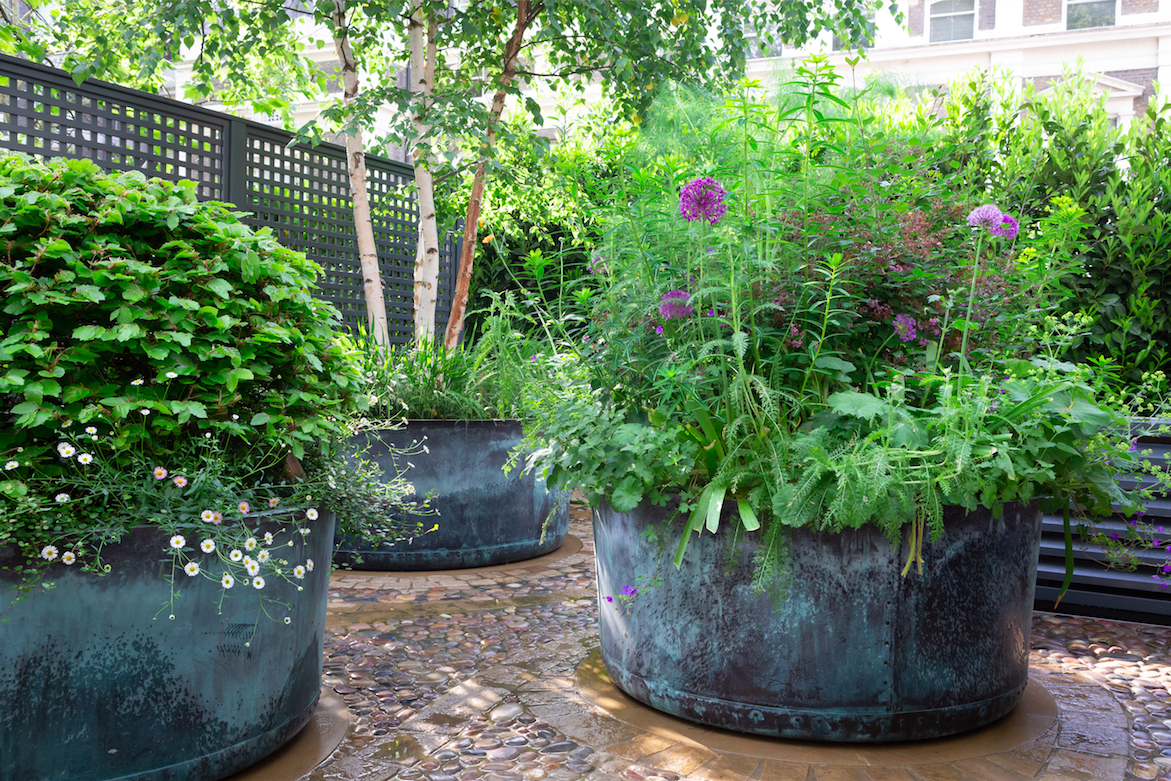 GARDEN DESIGN IDEAS FROM THE WINNERS OF THE SGD AWARDS 20 ...